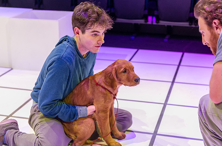 Tim Earl as Christopher Boone, with dog, acting on stage in Auckland NZ