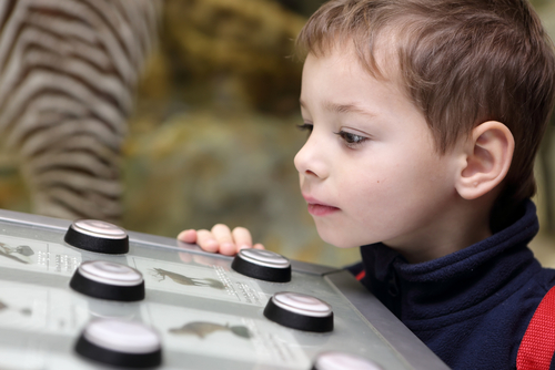 young child interacting with a learning activity at a zoo