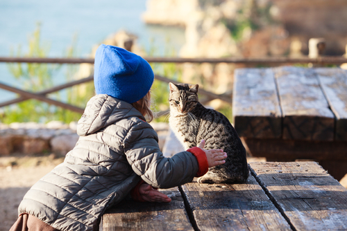 child in coat and hat at a wooden table outdoors petting a cat with the ocean in the background
