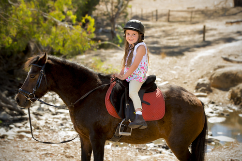 girl in helmet riding a pony