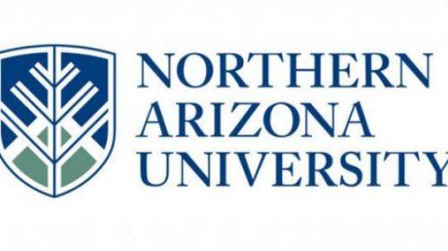 NAU Online Positive Behavior Support Graduate Certificate