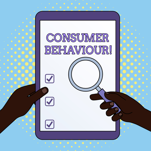 Consumer Behavior Analyst